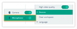 Audio Controls in the Virtual Classroom