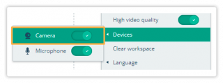 Video Controls in the Virtual Classroom