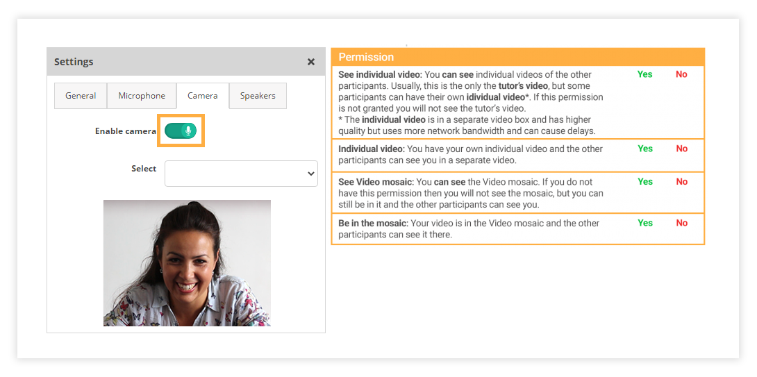 Video Permissions icon in the Virtual Classroom