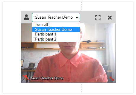 Individual video and Screen Share in the Virtual Classroom: Individual Video in Groups